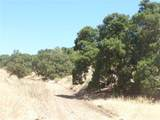 0 Shirtail Canyon (Hwy 146) - Photo 47