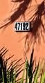 47192 El Agadir - Photo 45