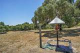 2155 Saucelito Creek Road - Photo 43