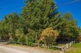 933 Mount Doble Drive - Photo 4