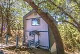 31981 Pine Cone Drive - Photo 5