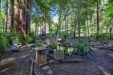 171 Emerald Forest Lane - Photo 37