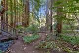 171 Emerald Forest Lane - Photo 5