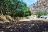 28552 Silverado Canyon Road - Photo 5