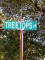 0 Tree Tops Lane - Photo 20
