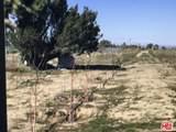 9536 Yucca Terrace Drive - Photo 16