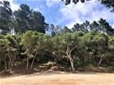 7830 Monterra Oaks Road (Lot 104) - Photo 5
