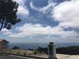 30103 Matisse Drive - Photo 2