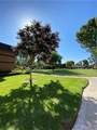 10520 White Oak Drive - Photo 3