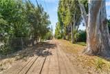 4101 Via Solano - Photo 31
