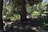 43553 Shasta Road - Photo 10