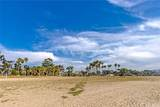 34131 Granada Drive - Photo 35