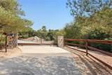 47685 Sandia Creek Drive - Photo 7