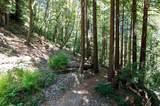 87 Redwood Drive - Photo 22