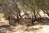 3301 Deer Run Road - Photo 39