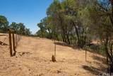 3301 Deer Run Road - Photo 41
