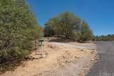 3301 Deer Run Road - Photo 53