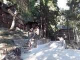 21586 Sawpit Canyon Road - Photo 5
