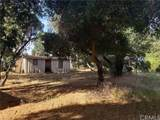 48165 Twin Pines Road - Photo 11