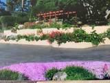25728 Tierra Grande Drive - Photo 26