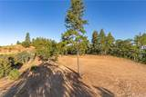 5393 Wilderness View Drive - Photo 4