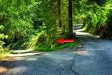 2 Sequoia - Photo 1