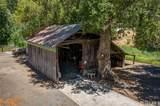 10228 Elk Mountain Road - Photo 11
