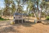 71 Webb Creek Circle - Photo 24