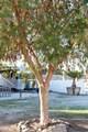 50825 Los Palos Road - Photo 31