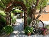 31665 Indian Oak Road - Photo 43