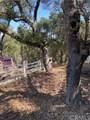 7500 San Gregorio Road - Photo 53