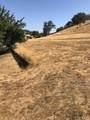 2738 Bridle Trail Lane - Photo 3