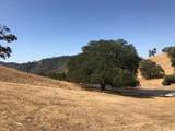 2738 Bridle Trail Lane - Photo 5