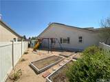 10237 Cotoneaster Street - Photo 46