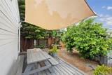 34005 Malaga Drive - Photo 35