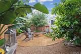 34005 Malaga Drive - Photo 39