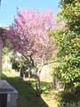 15498 La Subida Drive - Photo 25