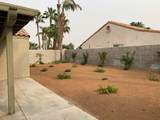 69315 Las Begonias - Photo 14