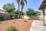 69315 Las Begonias - Photo 31