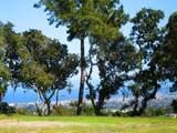 7870 Monterra Oaks - Photo 2