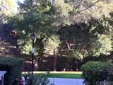 23637 Park Capri - Photo 4