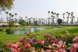 76736 Chrysanthemum Way - Photo 1