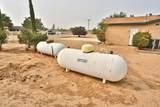 9875 Sunny Vista Road - Photo 28