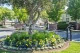 24412 Hampton Drive - Photo 24