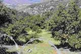 0 Couser Canyon - Photo 10