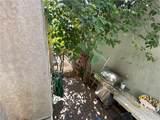 15527 Parthenia Street - Photo 15