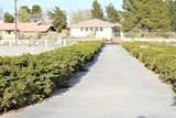 15184 Pocahantas Street - Photo 3