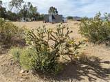 107305 Nipton Road - Photo 22