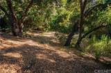 153 Bell Canyon Road - Photo 19