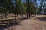 19629 Park Ridge Drive - Photo 2